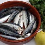 Omega-3-rasvahapot puhuttavat