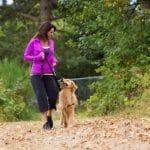 Hyviä uutisia koiranomistajille: lemmikki voi olla varsinainen kunto- ja terveysvalmentaja