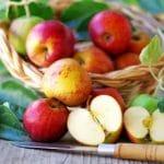 Omenoilla huikea terveyshyöty: vetää vertoja jopa statiinilääkitykselle