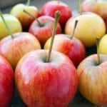 Omena päivässä pitää kilot loitolla