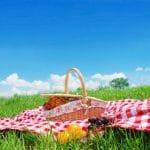 Pakataan piknikkori!
