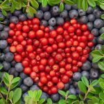 Keventäjän sydän